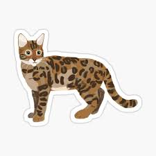 Bengal Cat Stickers Redbubble