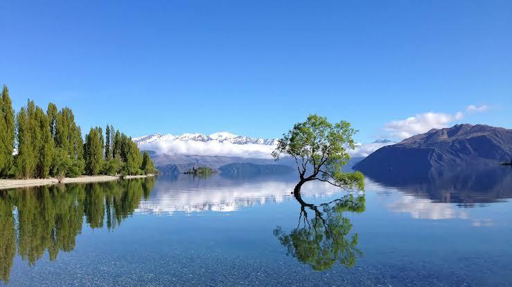 """Resultado de imagen de Lake Wanaka"""""""
