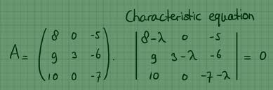 real eigenvalues and eigenvectors of