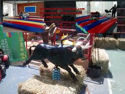 renta de toro mecanico – Lienzo Charro de Constituyentes