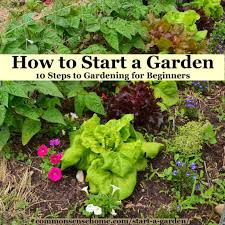 how to start a garden 10 steps to