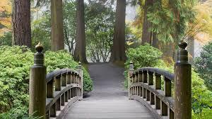 landscape portrait nature garden hd