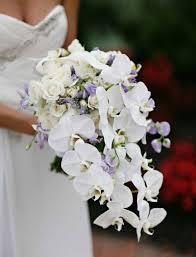 تعرفي على أبرز مسكات عروس شلال بالصور