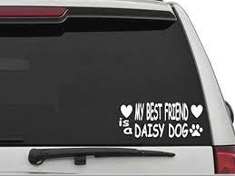 Amazon Com Decal Dan My Best Friend Is A Daisy Dog Vinyl Die Cut Car Truck Window Decal Sticker Laptop Kitchen Dining