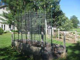 Everbilt 1 3 4 In X 3 1 2 In X 6 Ft Green Steel Fence T Post 901176eb The Home Depot In 2020 Steel Fence Fence 2 In