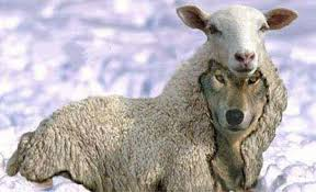 spotting crypto wolves in sheep s