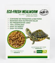 eco fresh mealworms 10 pack 35 00