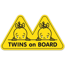 Twins On Board 2 Girls 3 Vinyl Sticker For Car Laptop I Pad Phone Helmet Hard Hat Waterproof Decal Walmart Com Walmart Com