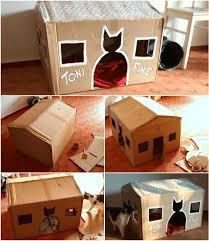 carton à fabriquer que vos chats vont