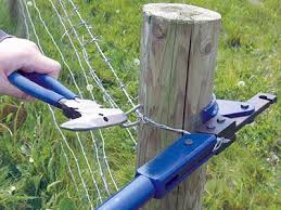 Barbed Wire Fence Staple Fastens Barbed Wire Firmly To Wooden Post