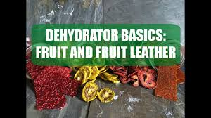 fruit and fruit leather