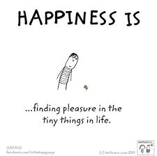 happiness is finding pleasure in the tiny things in life