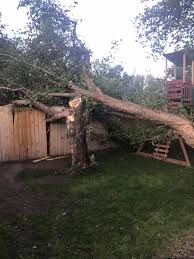 GALLERY: Damage and destruction from Monday night's wind storm | East Idaho  News