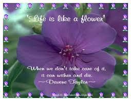 life is like a flower quotes best life quotes in hd images