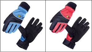 EIGO Cycle/Bicycle Windster Extended ...