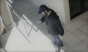 caught on camera alleged thief steals