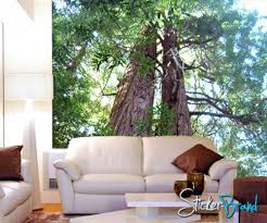 wall mural decal sticker giant redwood
