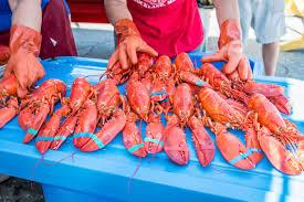 Maine Lobster Festival ...