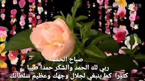 صباحيات مبهره مع تفتح الزهور والورود وتلاوه حجاريه مبهره الطبيعيه