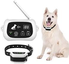 Explore Electric Fence Collars For Dogs Amazon Com