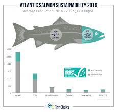 atlantic salmon fishchoice