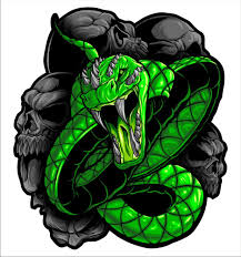 Green Snake Vinyl Decal Bluesnake Vinyl Sticker