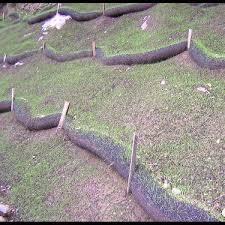 Slope Interruption Storm Water Managment Silt Fence Replacement Vegetation Establishment Landscape Design Vegetation Erosion Control