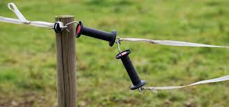 Does Electric Fencing Increase Stress On My Horse