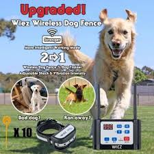 Best Wireless Electric Dog Fence Systems In 2020 Reviews
