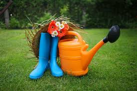 best gardening tools list for beginners