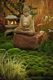 zen garden plants and design zen