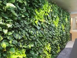 easy install nextgen living walls