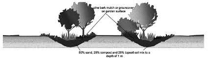 rain garden section elevation