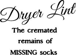 Dryer Lint The Cremated Remains Of Socks Vinyl Wall Decal Ebay
