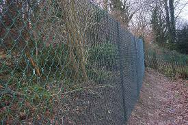 Chain Link Fence Dog Proof Fencing Clayton S Fencing