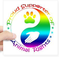 Amazon Com Cafepress Supporter Of Animal Rights Square Sticker 3 X 3 Square Bumper Sticker Car Decal 3 X3 Small Or 5 X5 Large Home Kitchen