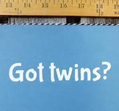 Twins Decal Got Twins Parents Of Twins Or Grandparents Of Twins Decal For Car Or Water Bottle Or Laptop Twinning Twin Baby Gift Auto Twins Happen Ca