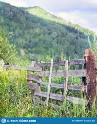 Weathered Wooden Split Rail Fence With Supports In Tall Grass With Mountains Blue Sky And White Clouds In Background In Early Stock Image Image Of Dramatic Green 139063747