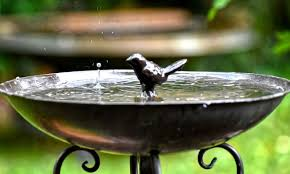 how to anchor a bird bath bird barn