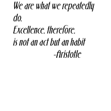 Custom Wall Decal We Are What We Repeatedly Do Excellence Therefore Is Not An Act But A Habit Quote Home Room Sticker Vinyl Wall 20x30 Walmart Com Walmart Com