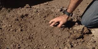 how to amend clay soil the