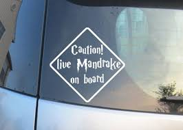 Harry Potter Car Decal Caution Live Mandrake On Board Harry Potter Car Harry Potter Decal Harry Potter Gifts
