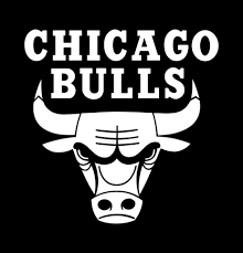 Chicago Bulls Decal North 49 Decals