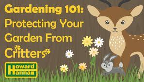 Gardening 101 Beginner S Guide To Protecting Your Garden From Critters Howard Hanna Blog