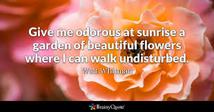 walt whitman give me odorous at sunrise a garden of
