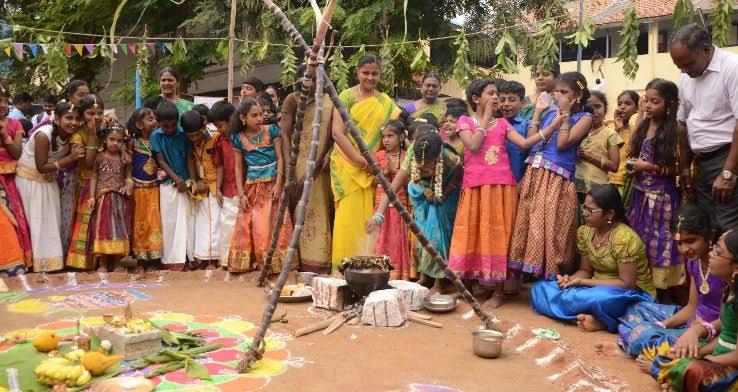 "Image result for pongal festival"""