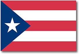 Amazon Com Puerto Rican Flag Car Magnet Decal 4 X 6 Heavy Duty For Car Truck Suv Automotive