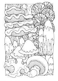Kleurplaat Paddestoelen Kleurplaten Adult Coloring Pages