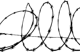 Barbwire Png Transparent Images Png All