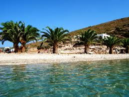 Υπέροχη!Η τροπική παραλία με τους φοίνικες και τα σμαραγδένια νερά ...